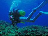 深くまで潜水中