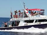 大勢を収容するダイビングボート