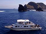 離島の周りを走るボート