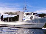 屋根付きボート