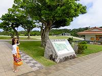 公園入口に立つ観光客