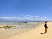 風景を楽しむ自然ビーチ