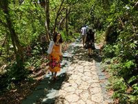 御嶽の林道を歩く観光客
