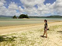 無人島に続く砂の道