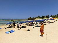 アクティビティ豊富なビーチ