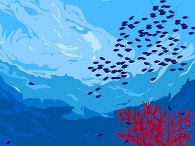 ダイビング中に見られる魚の大群