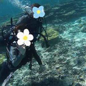 八重干瀬のサンゴとダイバー